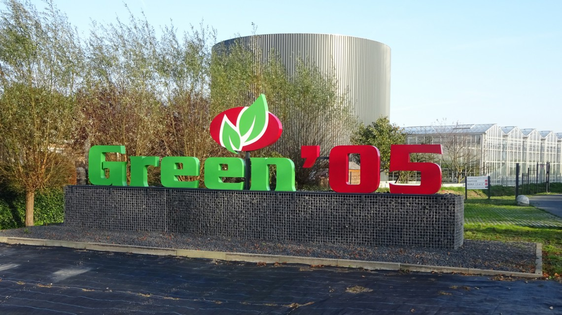 GREEN DSC07956