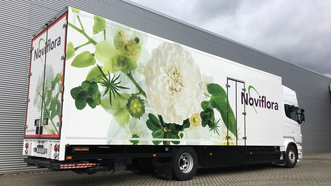 Noviflora 1600